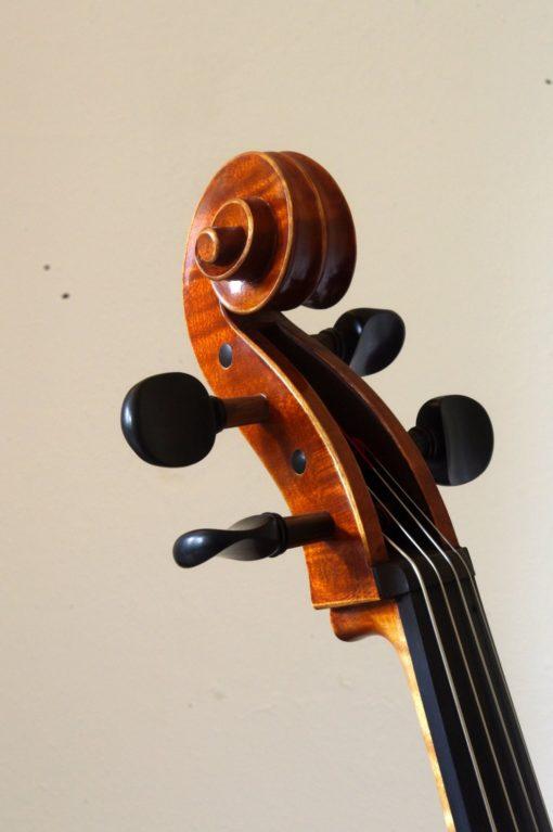 Moderne cello Roemenie